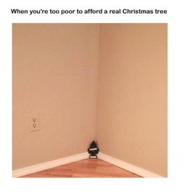 Name:  when-youre-too-poor-to-affordareal-christmas-tree-185692.jpg Views: 104 Size:  6.4 KB