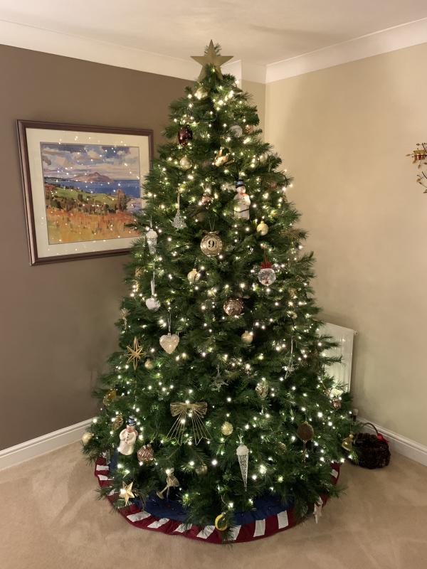 Name:  Tree 2019.jpg Views: 53 Size:  71.0 KB